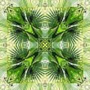 Palm Kaleidoscope 6 Art Print