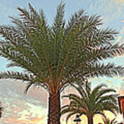 Palm On The Avenida Art Print