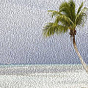 Palm Tree On The Tropical Beach Art Print