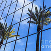 Palm Trees Reflection On Glass Office Building Art Print