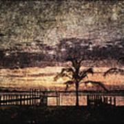 Palms And Docks Art Print