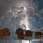 Palms And Lightning  Art Print
