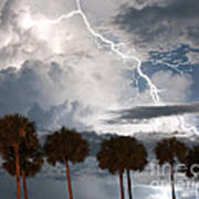 Palms And Lightning 3 Art Print