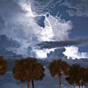 Palms And Lightning 4 Art Print