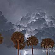 Palms And Lightning 7 Art Print
