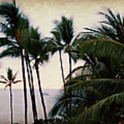 Palms In The Breeze Art Print