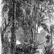 Panama Railway, 1875 Art Print