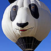 Panda Bear Hot Air Balloon Art Print