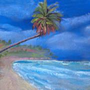 Paradise In Puerto Rico Art Print