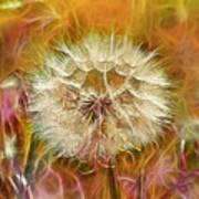 Pastel Dandelion Flare Art Print
