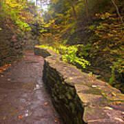 Path Through The Gorge Art Print