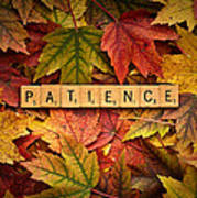 Patience-autumn Art Print