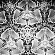Patterns Of Black And White Art Print
