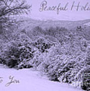 Peaceful Holidays To You Art Print