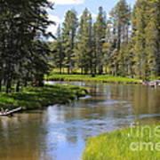 Peaceful Mountain Stream Art Print
