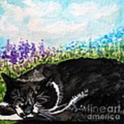 Peaceful Slumber Art Print