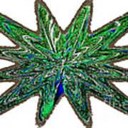 Peacock Burst Art Print