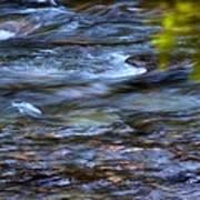 Pebbles Under Icicle Creek Washington State Art Print