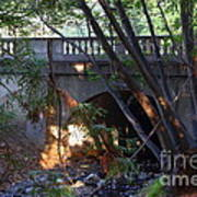 Pedestrian Bridge And Strawberry Creek  . 7d10132 Art Print
