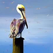 Pelican Perch Art Print by Suni Roveto