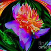 Peony Flower Energy Art Print