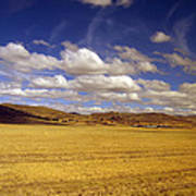 Peruvian High Plains 2 Art Print