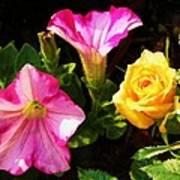 Petunias With A Rosy Neighbor Art Print