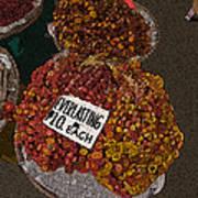 Philippines 3451 Everlasting Art Print