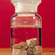 Phosphorus In A Jar Art Print by Andrew Lambert Photography