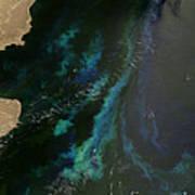 Phytoplankton Off Argentinas Coast Art Print by Nasa