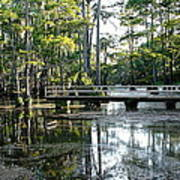 Pier In The Swamp Art Print