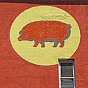 Pig On A Wall Art Print