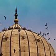Pigeons Around Dome Of The Jama Masjid In Delhi In India Art Print
