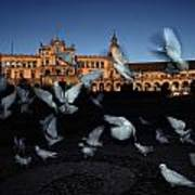 Pigeons Flutter Above The Plaza De Art Print