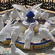 Pigeons Of Maria Luisa Parque Art Print