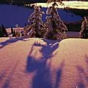 Pink And Purple Sunrise Shadows Of Snow Art Print