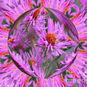 Pink Asters Energy Art Print