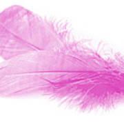 Pink Doubles Art Print