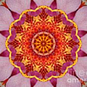 Pink Orchid Mandala-1 Art Print