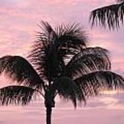 Pink Palm Art Print