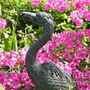 Pinkness Of A Bird Art Print