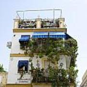 Plant Covered House In Triana Seville Art Print