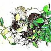 Plant Falls Print by YoMamaBird Rhonda