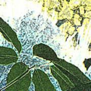 Plant Life Inside-outside Art Print
