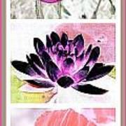 Plant Material Art Print