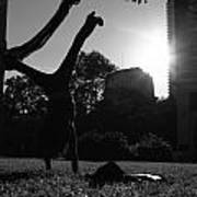 Playing With The Sun II - Philadelphia - Pensilvania - Sunset Art Print