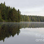 Pog Lake Tree Line Art Print by Chris Hill