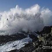 Point-lobos-9-5 Print by Craig Lovell