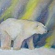 Polar Lights Art Print