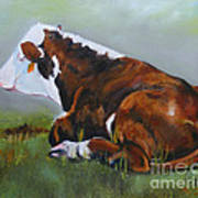Polled Herford Baby 2 Art Print
